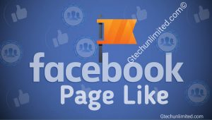 10 FREE WAYS TO GET FACEBOOK PAGE LIKES