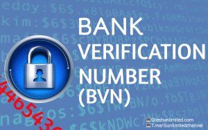 What You Should Know About Your Bank Verification Number (BVN)